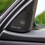 black car speaker tweeter in door post